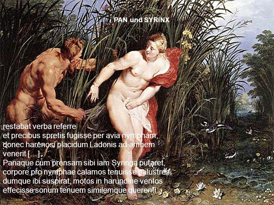 PAN und SYRINX restabat verba referre et precibus spretis fugisse per avia nympham, donec harenosi placidum Ladonis ad amnem venerit […]
